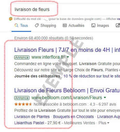 exemple pub adwords